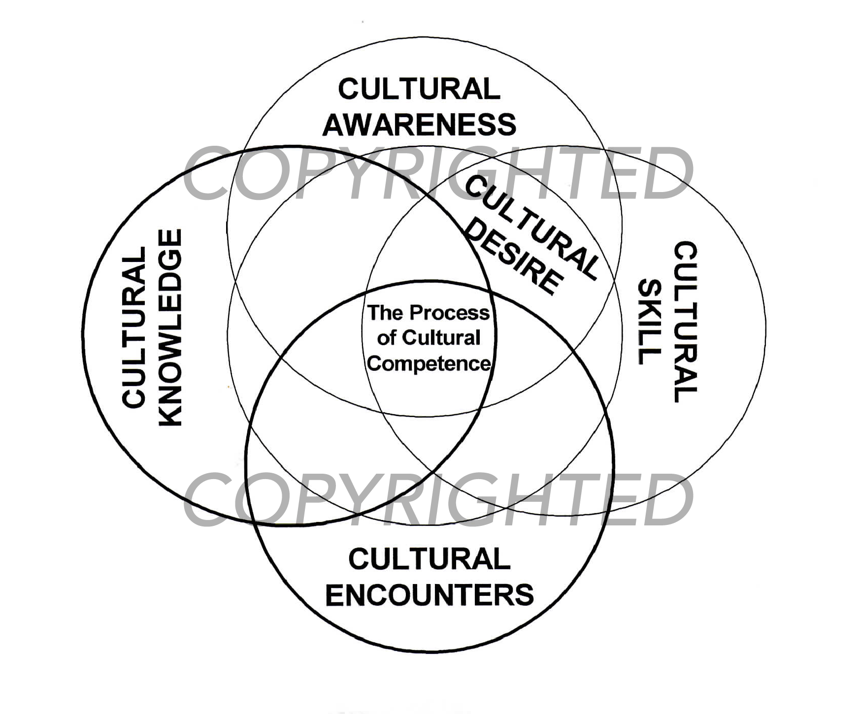 the process of cultural competence in the delivery of healthcare
